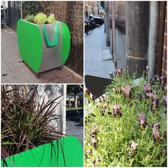 amsterdam-installiert-pissoirs-in-topfpflanzen-damit-touristen-nicht-auf-strasse-urinieren